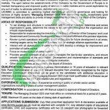 LDCMMC Lahore Jobs 2019