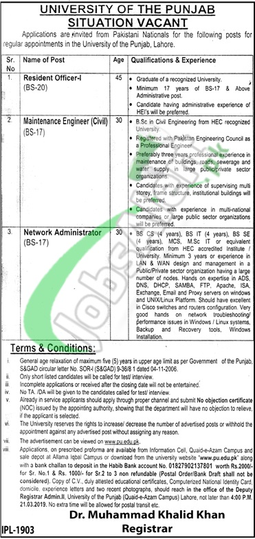 University of Punjab Jobs