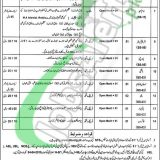 Session Court Toba Tek Singh Jobs 2019