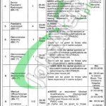 Children's Hospital & Institute of Child Health Lahore Jobs 2019