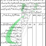 Health Department Sindh Jobs 2019