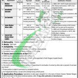 Sindh Rangers Jobs 2019