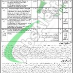 District and Session Court Bahawalpur Jobs