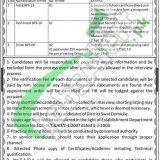 Saidu Medical College Swat Jobs