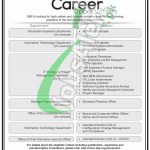 Assistant Director OG-2 Jobs