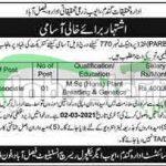 AARI Faisalabad Jobs