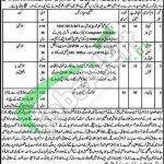 District and Session Court Kohat Jobs