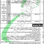 District and Session Court North Waziristan Jobs
