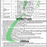 TMA Peshawar Jobs