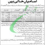 Ministry of Kashmir Affairs and Gilgit Baltistan Jobs