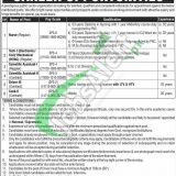 Jobs in GINUM Cancer Hospital Gujranwala