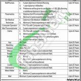 Punjab Rangers Teaching Hospital Lahore Jobs