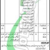 Sindh Prison Department Jobs