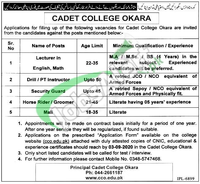 Cadet College Okara Jobs