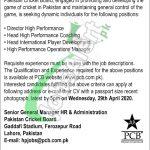 Director High Performance Jobs