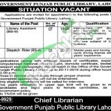 Directorate of Public Libraries Punjab Jobs