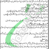 Culture Tourism & Antiquities Department Sindh Jobs