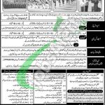 Join PAF 2020