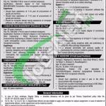 PDMA Punjab Jobs