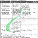 Pakistan Institute of Management Jobs
