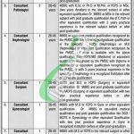 Government Said Mitha Teaching Hospital Lahore Jobs