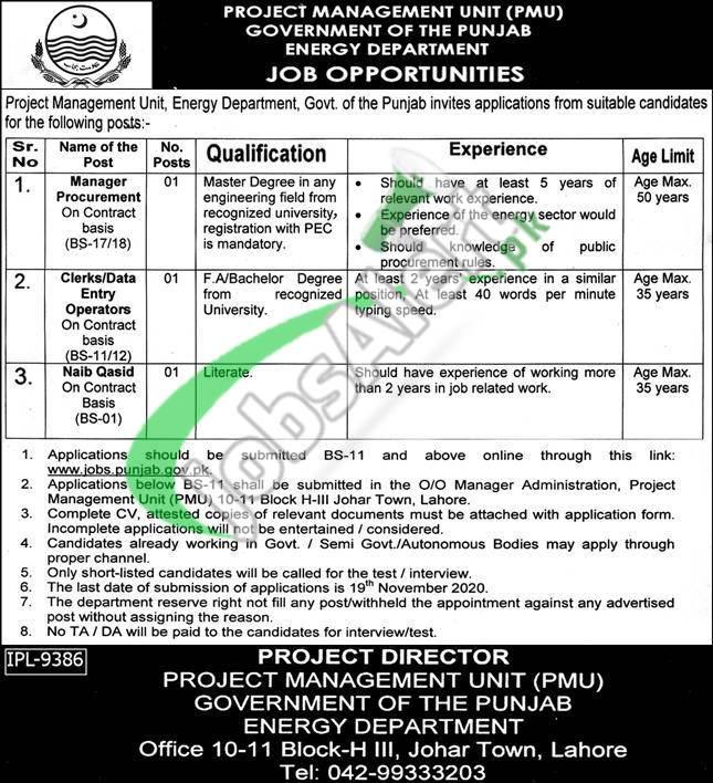 Project Management Unit PMU Energy Department Jobs