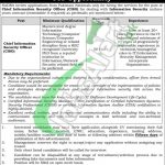 Chief Information Security Officer Jobs