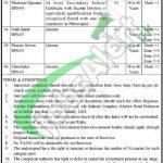 KPK Service Tribunal Peshawar Jobs