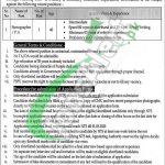 Policy and Strategic Planning Unit Jobs