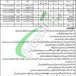 District Health Authority Nakana Sahib Jobs