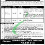 PO Box 123 Peshawar Jobs