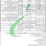 Culture Tourism and Antiquities Department Sindh Jobs