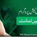 Ehsaas Emergency Cash Program