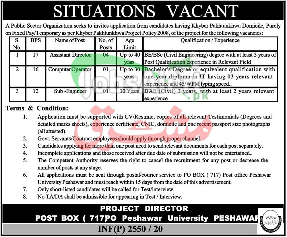 PO Box 717 Peshawar Jobs