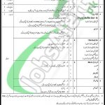 PO Box 769 GPO Rawalpindi Jobs