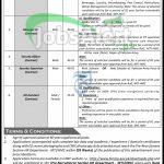 MTI Peshawar Jobs
