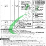 Local Govt & Rural Development Department Peshawar Jobs