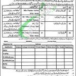 Cantt Public High School & Girls College Multan Jobs
