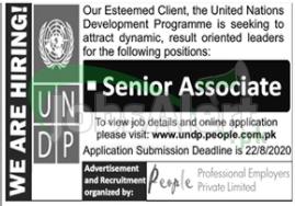 United Nations Development Program Jobs 2020