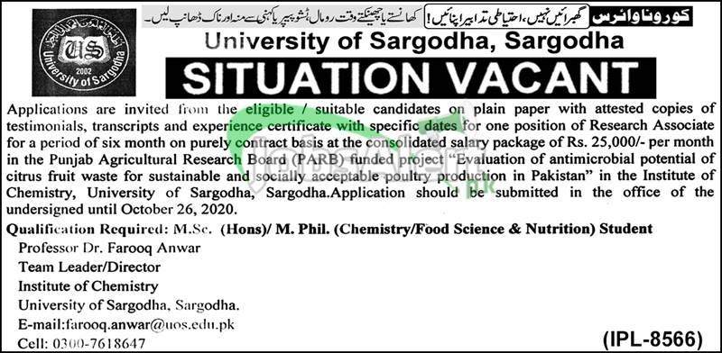 University of Sargodha Jobs