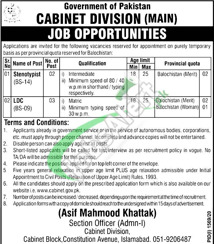 Cabinet Division Jobs