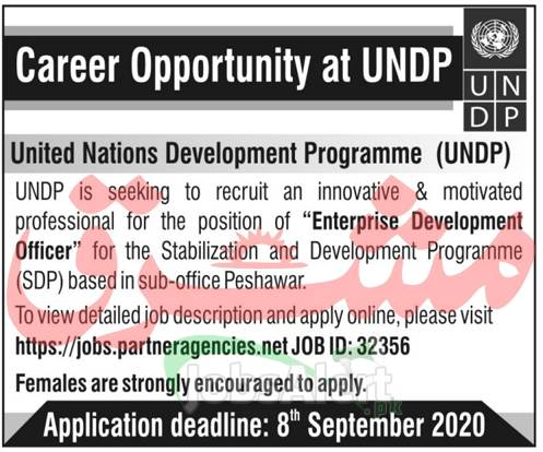 United Nations Development Program Jobs