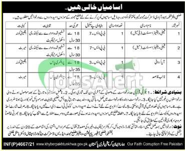 Population Welfare Department Mohmand Jobs