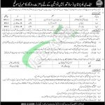 www.fcblnsouth.gov.pk Jobs