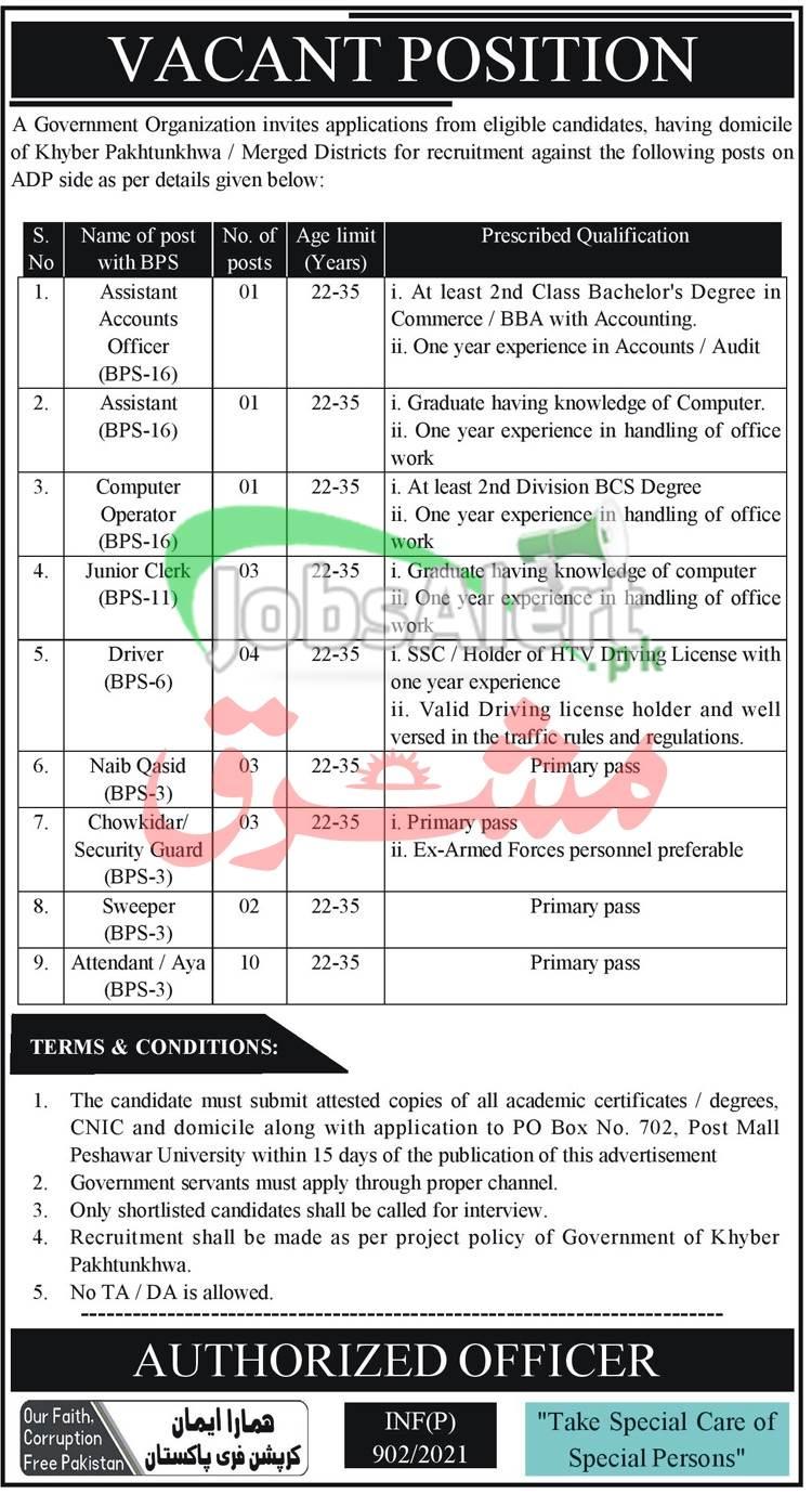 PO Box 702 Peshawar Jobs