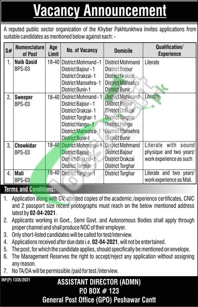 PO Box 123 GPO Peshawar Jobs