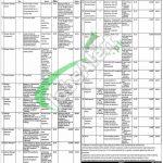 Punjab Masstransit Authority Jobs