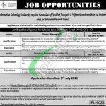 ITU Lahore Jobs