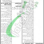 Finance Department Sindh Jobs 2021