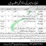 Baloch Center Abbottabad Jobs